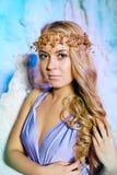 Mujer joven en vestido de la princesa en un fondo de una hada del invierno Fotografía de archivo