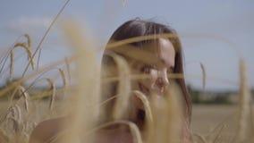 Mujer joven encantadora blanda del retrato que disfruta de la naturaleza y de la luz del sol en campo de trigo en los rayos color almacen de video