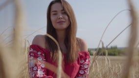 Mujer joven encantadora blanda del retrato que disfruta de la naturaleza y de la luz del sol en campo de trigo en los rayos color almacen de metraje de vídeo