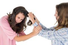 Mujer joven enojada que tira del pelo de las hembras en una lucha fotos de archivo libres de regalías