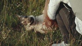 Mujer joven feliz hermosa que frota ligeramente su perro cariñoso en el tiempo de verano del campo Paseo femenino con su perro mi almacen de metraje de vídeo