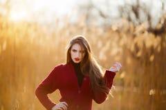 Mujer joven feliz libre Hembra hermosa con el pelo que sopla sano largo que disfruta de la luz del sol en parque en la puesta del Imágenes de archivo libres de regalías