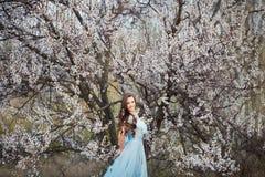Mujer joven hermosa con el pelo que sopla sano largo que se relaja en parque en la puesta del sol Imagen de archivo