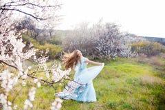 Mujer joven hermosa con el pelo que sopla sano largo que se relaja en parque en la puesta del sol Fotografía de archivo libre de regalías