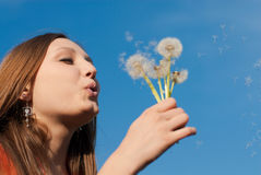 Mujer joven hermosa con las flores y el cielo azul grande Fotografía de archivo
