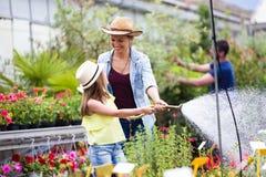 Mujer joven hermosa con su hija que riega las plantas con una manguera en el invernadero imagenes de archivo