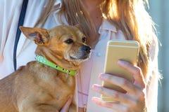 Mujer joven hermosa con su perro usando el teléfono móvil Foto de archivo