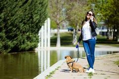 Mujer joven hermosa con su perro usando el teléfono móvil Fotos de archivo libres de regalías