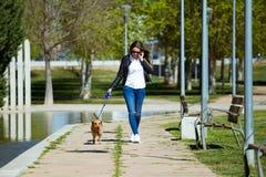 Mujer joven hermosa con su perro usando el teléfono móvil Imagen de archivo libre de regalías