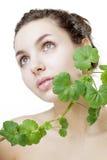 Mujer joven hermosa con una planta verde Foto de archivo