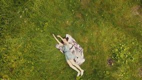 Mujer joven hermosa de la visión superior que se relaja en hierba en día de verano almacen de metraje de vídeo