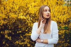 Mujer joven hermosa en árbol amarillo floreciente Imagen de archivo