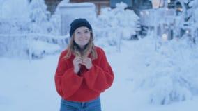 Mujer joven hermosa en bosque mágico del invierno metrajes