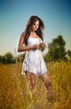 Mujer joven hermosa en campo de flores salvajes en fondo del cielo azul Retrato de la muchacha morena atractiva con el pelo largo Foto de archivo