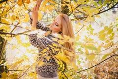 Mujer joven hermosa que presenta en un bosque del otoño Fotos de archivo libres de regalías