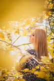 Mujer joven hermosa que presenta en un bosque del otoño Foto de archivo