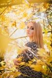 Mujer joven hermosa que presenta en un bosque del otoño Fotografía de archivo libre de regalías
