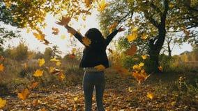 Mujer joven irreconocible que salta en parque otoñal y hojas de arce amarillas que lanzan Follaje del color que cae abajo Chica almacen de metraje de vídeo