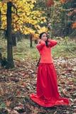 Mujer joven magnífica en vestido rojo con la corona del amarillo le del otoño Fotografía de archivo