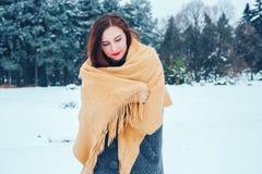 Mujer joven pelirroja con una bufanda roja en un bosque del invierno Fotos de archivo