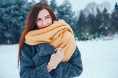 Mujer joven pelirroja con una bufanda roja en un bosque del invierno Imagen de archivo