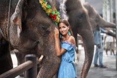 Mujer joven que abraza la cabeza de un elefante imagen de archivo