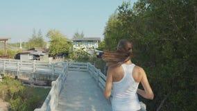 Mujer joven que activa en la trayectoria de bosque de los mangles Steadicam tiró en la cámara lenta almacen de video
