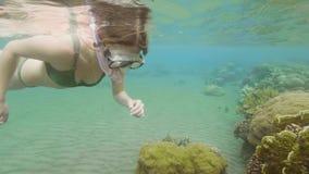 Mujer joven que bucea en agua de mar con la máscara y el tubo respirador y que mira el mundo subacuático Mujer subacuática de la  almacen de metraje de vídeo