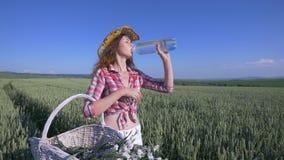 Mujer joven que camina con la cesta con flores y una botella de agua un campo de trigo con el cielo azul en el fondo lento fotos de archivo
