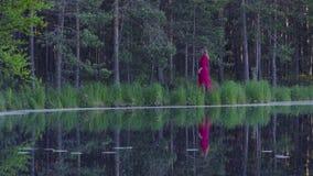 Mujer joven que camina en el bosque cerca del lago Imágenes de archivo libres de regalías