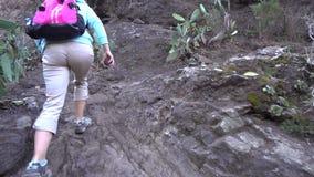 Mujer joven que camina en la garganta almacen de metraje de vídeo