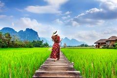 Mujer joven que camina en la trayectoria de madera con el campo verde del arroz en Vang Vieng, Laos foto de archivo libre de regalías