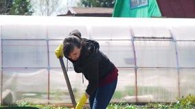 Mujer joven que cava un suelo para plantar las patatas metrajes