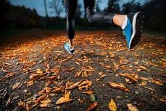 Mujer joven que corre en las hojas de otoño de la última hora de la tarde Fotografía de archivo libre de regalías