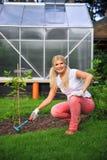 Mujer joven que cultiva un huerto en su yarda con los rastrillos Imagen de archivo