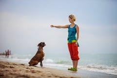 Mujer joven que da comandos al perro del boxeador mientras que camina Foto de archivo