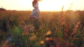 Mujer joven que disfruta de la naturaleza y de la luz del sol en paja almacen de metraje de vídeo