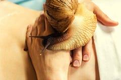 Mujer joven que experimenta el tratamiento con los caracoles de Achatina del gigante en b Imagen de archivo