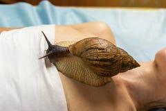 Mujer joven que experimenta el tratamiento con los caracoles de Achatina del gigante en b Fotografía de archivo libre de regalías