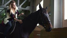 Mujer joven que frota ligeramente un cuello del ` s del caballo dentro Un caballo negro pedigrí para el deporte ecuestre almacen de metraje de vídeo
