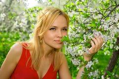 Mujer joven que goza del olor del árbol floreciente fotografía de archivo