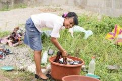 Mujer joven que hace el lavadero en un cuenco Imagenes de archivo