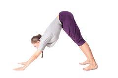 Mujer joven que hace el perro boca abajo del ejercicio de la yoga Imagenes de archivo