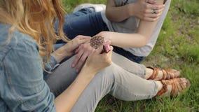 Mujer joven que hace mehendi floral en una mano usando la alheña metrajes