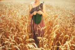 Mujer joven que hace punto en el campo de trigo Imagen de archivo libre de regalías