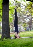 Mujer joven que hace yoga en parque de la mañana imágenes de archivo libres de regalías