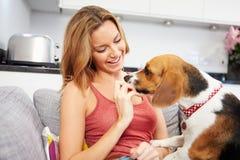 Mujer joven que juega con el perro casero en casa Foto de archivo