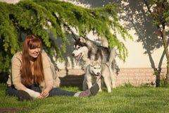 Mujer joven que juega con los perros Fotos de archivo libres de regalías