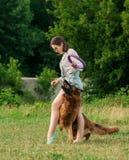 Mujer joven que juega con su perro en el parque Foto de archivo