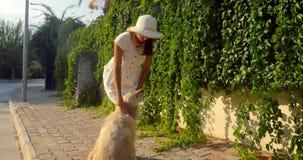 Mujer joven que juega con un perro almacen de video